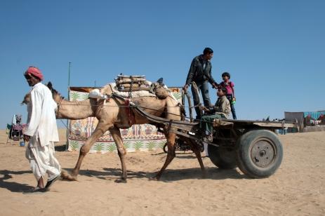 Camel taxi, Bikaner, Rajasthan